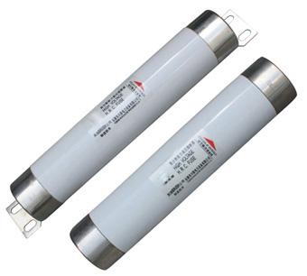 XRNM电动机保护用高压限流熔断器(插入式/母线式 )